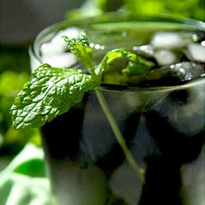 Alkaline Recipes - Chlorophyll Thrill