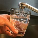 Chemical Pesticides in Tap water linked to food allergies