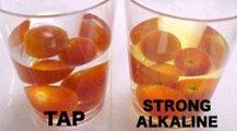 showing tomatoes in alkaline water
