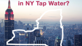 Hey New York, Know What's In Your Tap Water?